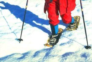 Snow shoeing in fresh powder